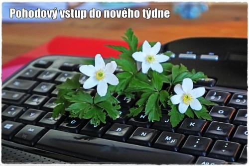 keyboard-6152664_960_720.jpg