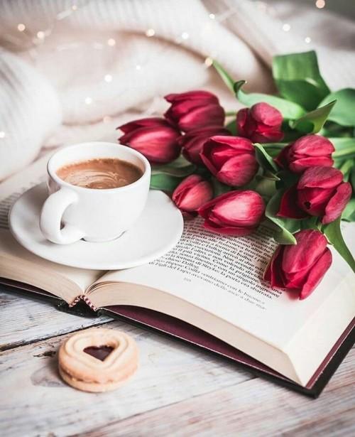 kava,kniha,tulipany,susenka