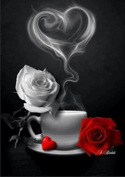 šálek s podšálkem bílá a červená růže - srdce