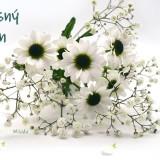 chrysanthemums-white-6149832_960_720