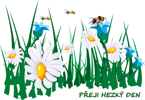 flowers-45786_960_720.png
