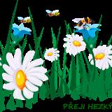 flowers-45786_960_720