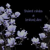 magnolias-6219420_960_720