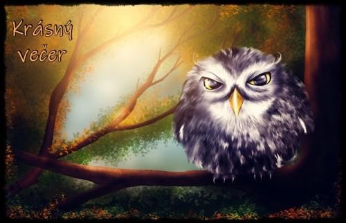 owl-2020011_960_720.jpg