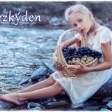 child-6279500_960_720