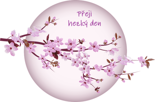 cherry-blossom-5439750_960_720.png