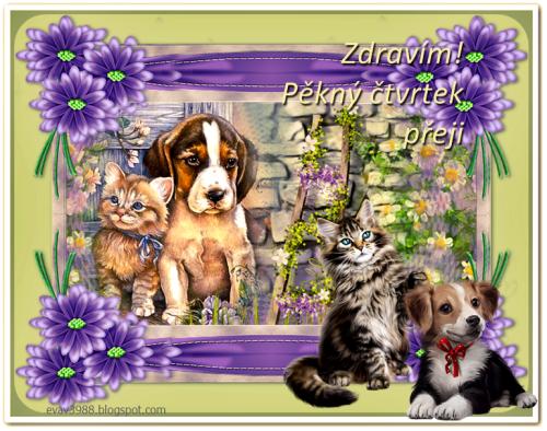 ZDRAVIM_PEKNY-CTVRTEK-PREJI.png