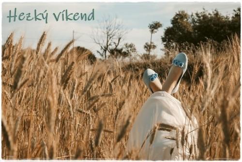 wheat-field-6392428_960_720.jpg