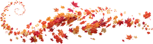 autumn-leaves-5386496_960_720.png