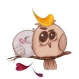 birds-5770589_960_720