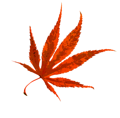 autumn-1608534_960_720.png