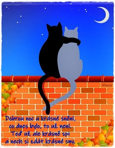 cats-on-brick-wall-3743662_960_720.jpg