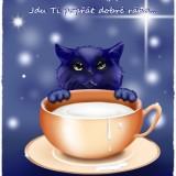 kitten-83660_960_720