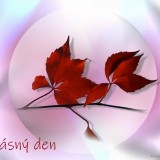 vine-leaves-4955146_960_720
