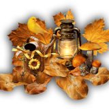 fall-6344451_960_720.png
