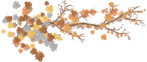 leaves-3207817_960_720.png
