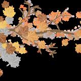 leaves-3207817_960_720